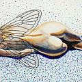 Hibernation by Gita Skujina