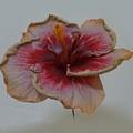 Hibiscus 3 by Barbie Corbett-Newmin