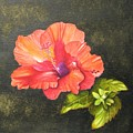 Hibiscus Dance In The Sun by Elizabeth H Tudor