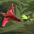 Hibiscus Dark And Light Photopainting 1 by Linda Brody