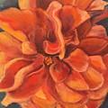 Hibiscus by Gloria Smith