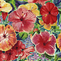 Hibiscus Impressions by Patti Bruce - Printscapes