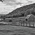 Hickory Hills 0425 by Guy Whiteley
