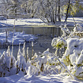 Hickory Nut Grove Landscape by Raymond Kunst