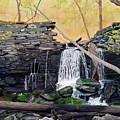 Hidden Sanctuary by Heidi Parmelee-Pratt