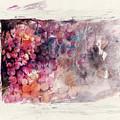 Hidden Beauty by Rachel Christine Nowicki