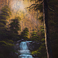 Hidden Brook by C Steele