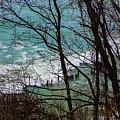 Hidden Cove by Jennifer Kohler