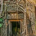 Hidden Door by Nichon Thorstrom