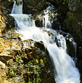 Hidden Falls by Pamela Patch