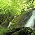Hidden Falls - Shenandoah National Park. by Constantine Vloutely