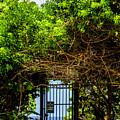 Hidden Gate by Wolfgang Stocker