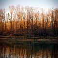 Hidden Lake In Autumn Digital Painting 7333 Dp_2 by Steven Ward