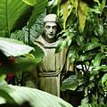 Hidden Monk by Sydney Thompson