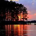 Hidden Sunrise by Lisa Wooten