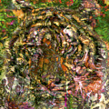 Hidden Tiger by Chuck Brittenham