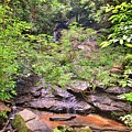 Hidden Waterfall At Stumphouse Tunnel Oconee County South Carolina  by Lisa Wooten