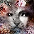 Hiding Catlady by Artful Oasis