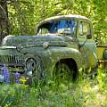 Hiding by Idaho Scenic Images Linda Lantzy