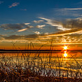 Higgins Lake Sunset With Saw Grass by Joe Holley
