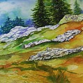 High Country Boulders by Mary Lou McCambridge