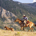 High Country Ride by Jack Bell