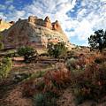 High Desert Paint by Gary Yost