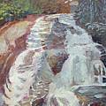High Falls Dupont Forest by Lisa Blackshear