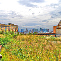 High Line On The Hudson by Randy Aveille