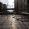 High Line Park by Eddy Joaquim