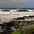 High Ocean Surf by Sally Weigand