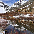 High Peak Reflections by Leda Robertson