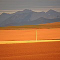 High Plains Of Alberta With Rocky Mountains In Distance by Mark Duffy
