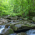 High Shoals Falls Trail In South Mountain Panorama by Ranjay Mitra