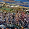 High Sierra by Donald Maier