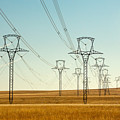 High Voltage Power Lines by Todd Klassy