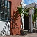 High Wheel Bicycle In Bermuda by Nicole Freedman