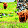 Highland Cattle by White Stork Gallery