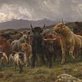 Highland Raid by Rosa Bonheur