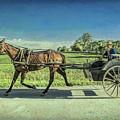 Heading Home by Lynn Sprowl