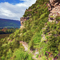 Hike Up Mt Iron Wanaka New Zealand by Joan Carroll