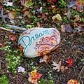 Hiking Dreams by Kathy Partak