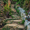 Hiking In Cinque Terre Italy by Joan Carroll