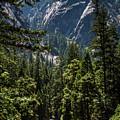 Hiking Merced #4 by Robert J Caputo