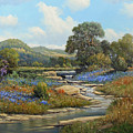 Hill Country Draw by George Kovach