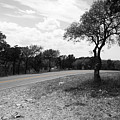 Hill Country Highway by Dylan Punke