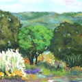 Hill Country II by Vicki Brevell