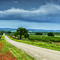 Hill Country Of Texas by Thomas R Fletcher