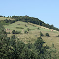 Hill With Haystack And Trees Landscape by Goce Risteski