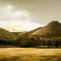 Hills And Fields Of Trial Harbour by Jorgo Photography - Wall Art Gallery
